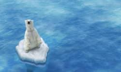 Der Klimawandel ist eine der wichtigsten Herausforderungen unserer Zeit